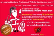 Bespoke Web Design Christmas Special Offer at $480