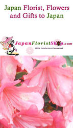 Florist Send Flowers to Japan Gifts Flowers to Japan