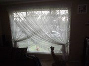 Lace Cross Over Curtains